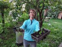 Tiina Tambaum aias. Foto: erakogu