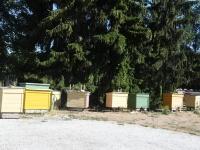Avatud talude päeval Puusepa mesindustalus. Foto: Urmas Saard / Külauudised