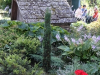 Avatud talude päeval Riina ja Taivo juures. Foto: Urmas Saard / Külauudised