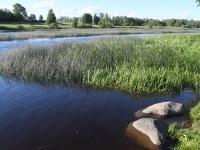 6  Pikniku paigas Pärnu jõe ääres. Foto: Urmas Saard / Külauudised
