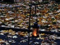 011 Hingedepäev kalmistul. Foto: Urmas Saard / Külauudised