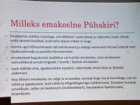 024 Hõimurahvaste aeg Pärnus. Foto: Urmas Saard