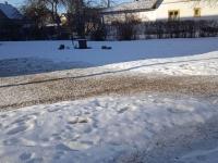 Varjud Jõgeva linna lumel enne kevade algust. Foto: Jaan Lukas