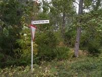 Tee Moortitsa külasse Kuremaa ja Palamuse vahel. Foto: Jaan Lukas