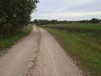Sügisene külatee Jõgeva vallas Võduvere külas. Foto :Jaan Lukas