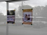 Samaaegselt Joosep Ailiste näitusega on jätkuvalt Sindi raamatukogus üleval Helen Parmeni fotonäitus. Foto: Urmas Saard / Külauudised