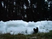 014 Jõuluõhtu Pärnu Metsaklmistul. Foto: Urmas Saard