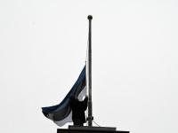 010 Koolivaheajale riigi sünnipäeva tähistava paraadiga. Foto: Urmas Saard