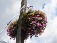 001 Lillede kastmine Sindis. Foto: Urmas Saard
