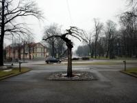 005  Mälestussamba loomine Eesti Vabariigi rajajatele. Pressifoto