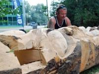 016 Toomas Altnurme alias Pomshiva Pärnu puuskulptuuripäevadel Veenuse bastionis