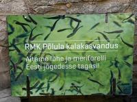 008 Rändekalade päev Padisel. Foto: Urmas Saard / Külauudised