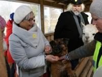 071 Alpakafarmis, Rohelise Jõemaa Koostöökogu ühepäevakohvikud. Foto: Urmas Saard