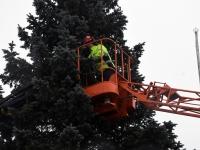 005 Sindi sotsiaalkeskuse ette toodi jõulupuu. Foto: Urmas Saard