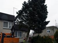 009 Sindi sotsiaalkeskuse ette toodi jõulupuu. Foto: Urmas Saard