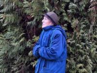 015 Sindi sotsiaalkeskuse ette toodi jõulupuu. Foto: Urmas Saard