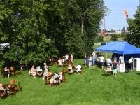 002 Sindi suvemuusika kontsert ja ühepäevakohvik. Foto: Urmas Saard / Külauudised