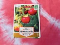008 Solanum sisymbriifolium, unilook-maavits. Foto: Urmas Saard