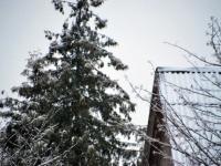 003 Tänavuse sügise esimene lumi Sindis. Foto: Urmas Saard