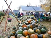 001 Kõrvitsakuhi Tapiku külaplatsil. Foto: Johannes Haav