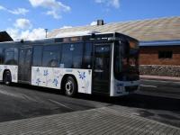 016 Tori minibussijaam. Foto: Urmas Saard / Külauudised