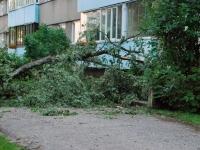 004 Tuulemurd Sindis Kooli tänaval. Foto: Urmas Saard