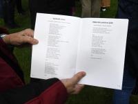 012 Vaba Rahva Laul Piiskopilinnuses. Foto: Urmas Saard / Külauudised