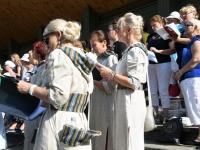 008 Vaba Rahva Laulul Intsikurmus. Foto: Urmas Saard