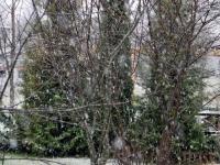 001 Väike lumesadu Sindis