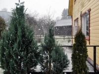 003 Väike lumesadu Sindis