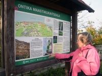 011 Valaste joal. Foto: Urmas Saard