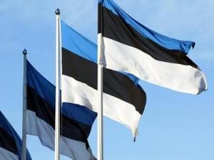 Eesti lipud. Foto: uuseesti.ee