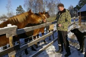 Tsooru miis Jõela Jarek uma viie eesti tõugu hobõsõga. Foto: Harju Ülle, Uma Leht