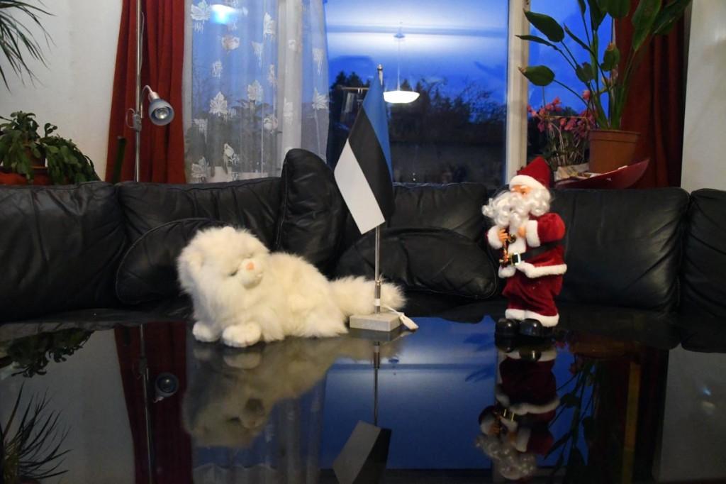 Eestlased kulutavad jõuluajal kõige rohkem lastele - palju kulutatakse mänguasjadele Foto Urmas Saard