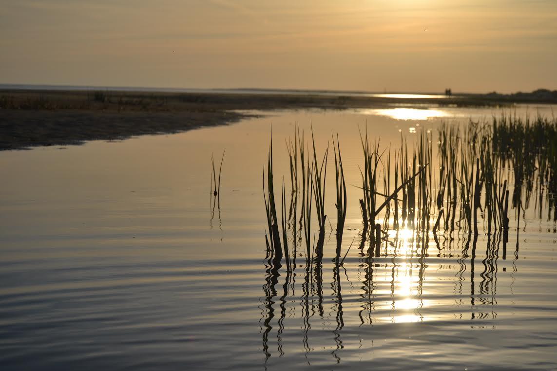 Helkleva vee sumbuvas säras. Foto: Liisa Paiste