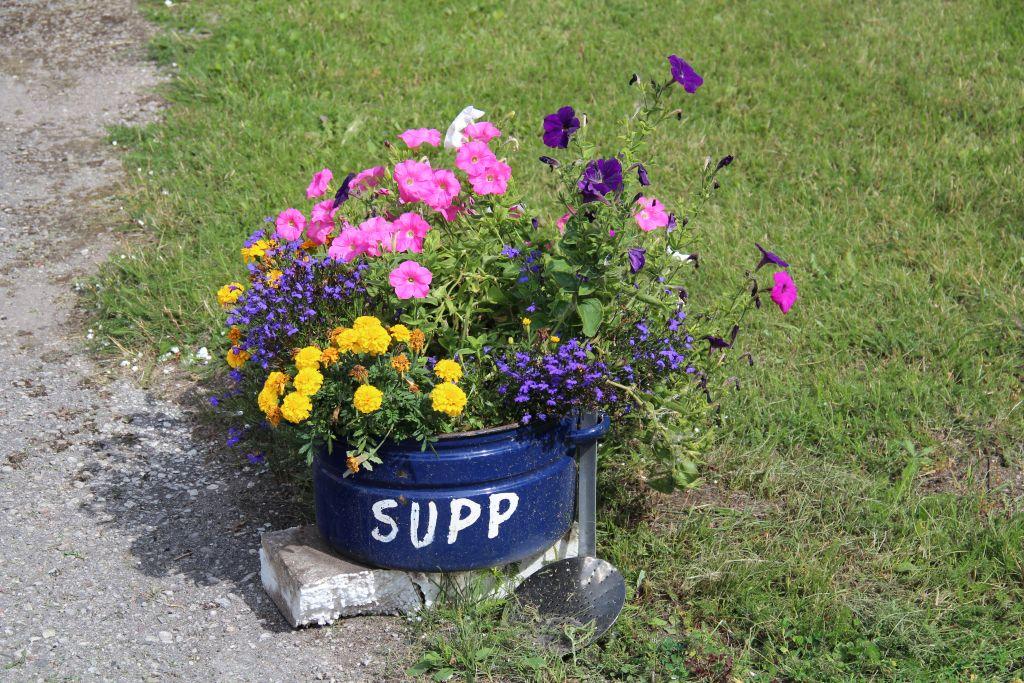 Suvine retsept: lillesupp Läänemaa moodi. Foto: Kylauudis.ee