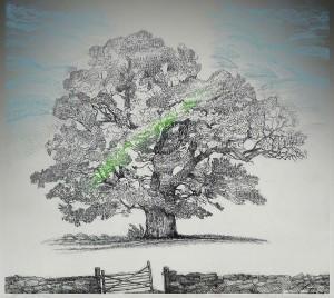 Laanemaa-puu