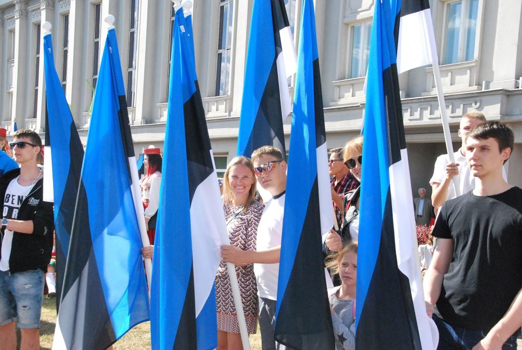 Lipu päeva pidulik lipurivistus Pärnus Iseseisvuse väljakul. Foto Urmas Saard