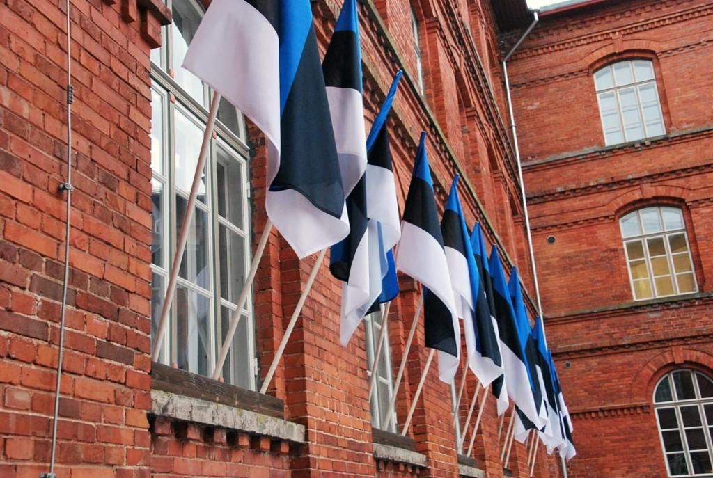 Lipud ehivad Sindi gümnaasiumi hoonet Tartu rahu 95 aastapäeval Foto Urmas Saard