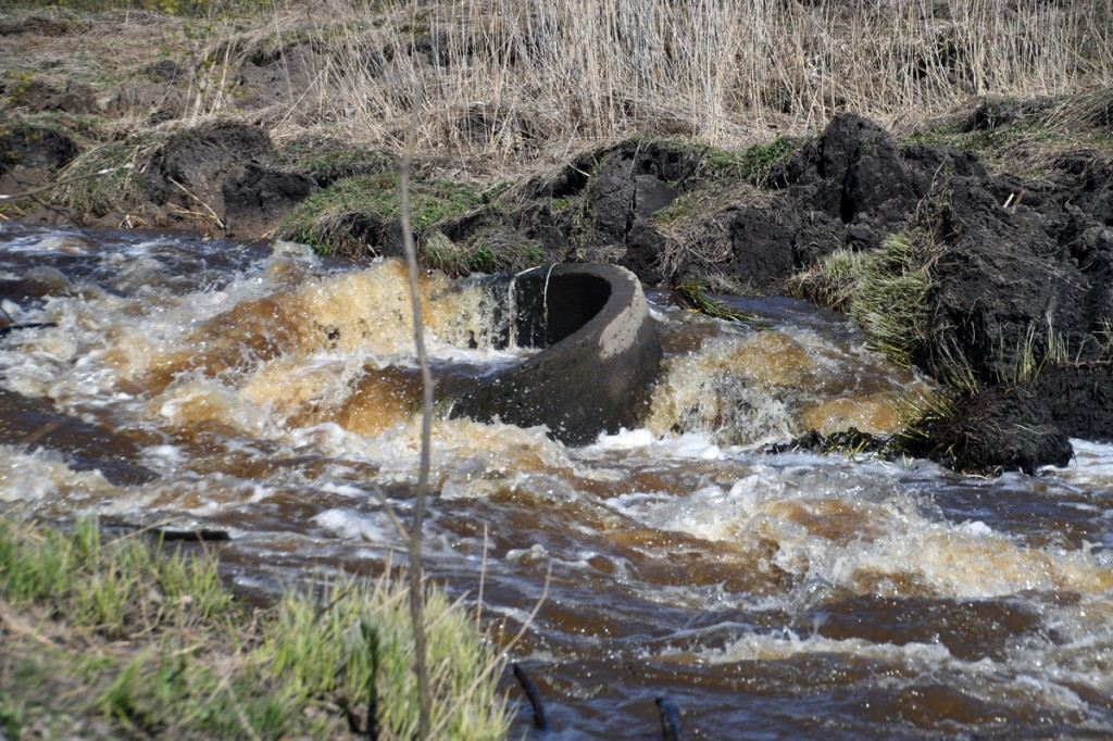 Maalihe sulges viivuks Sauga jõe, millest tõusuvesi kiiresti uuesti läbi murdis Foto Urmas Saard