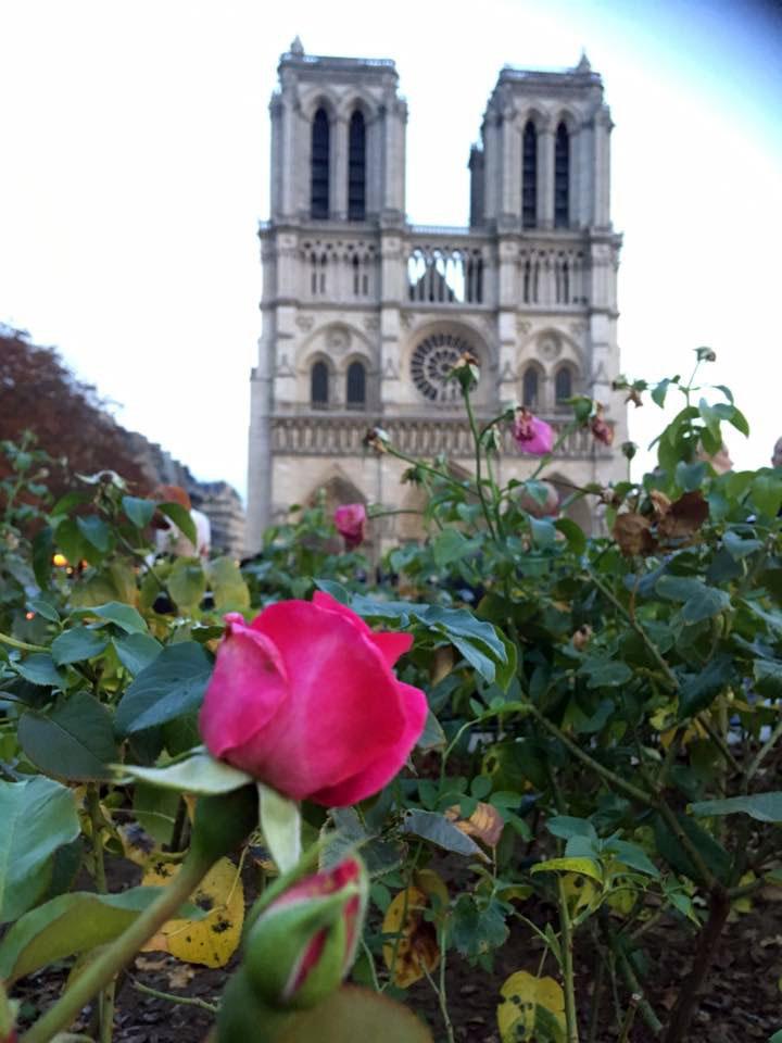 Notre-Dame ehk Pariisi Jumalaema kirik. Foto: Elina Allas