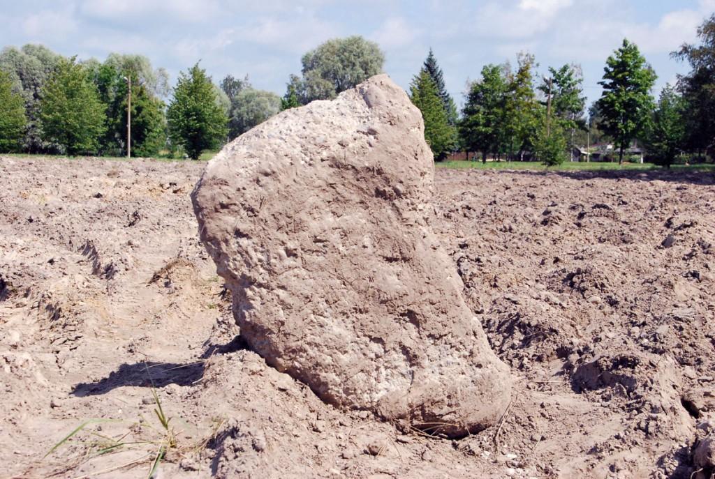Sinti rajatava Poseidoni jalgpallistaadioni alalt tuleb veel kive koristada Foto Urmas Saard