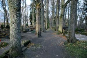 Täna, hingedepäeval, Sindi kalmistul Foto Urmas Saard