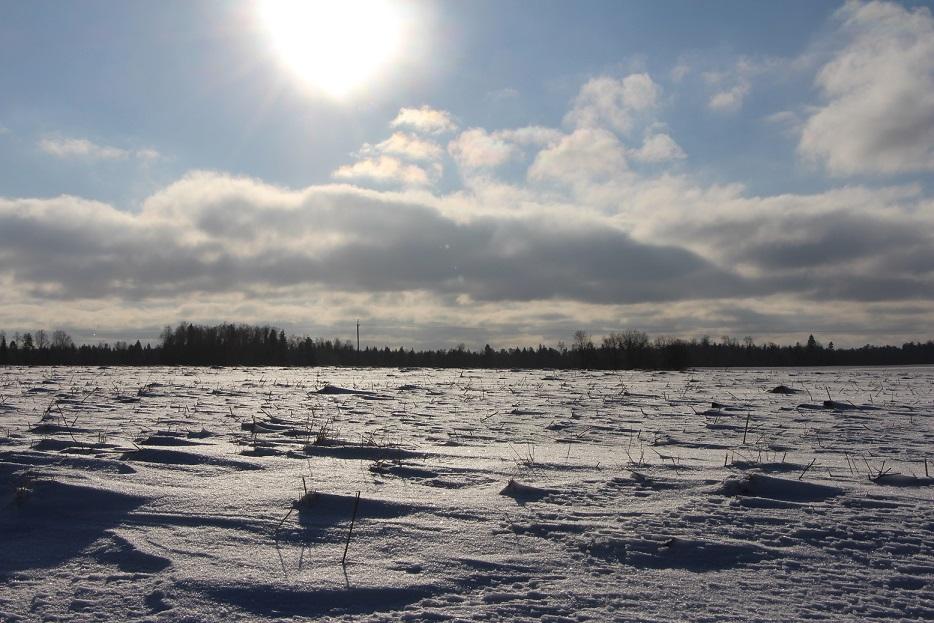 Talv kestab veel. Foto: Mikko Selg