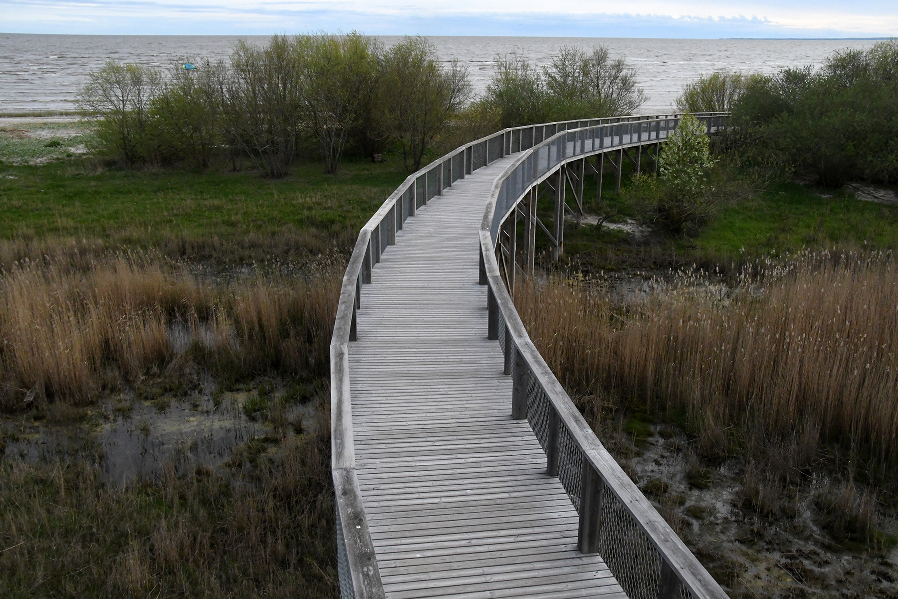 Tee Pärnu rannaniidu sonnide kohal. Foto: Urmas Saard  / Külauudised