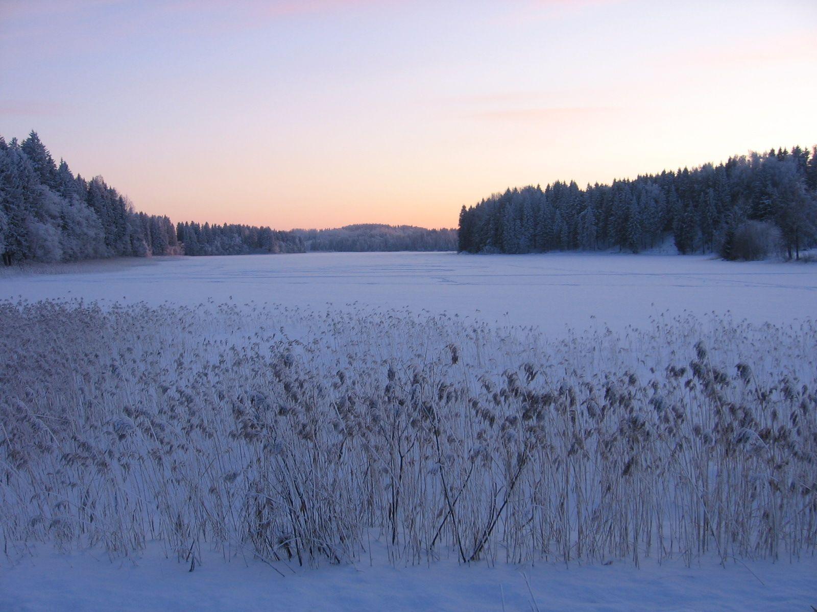 Vaskna järv. Foto: Erkki Peetsalu