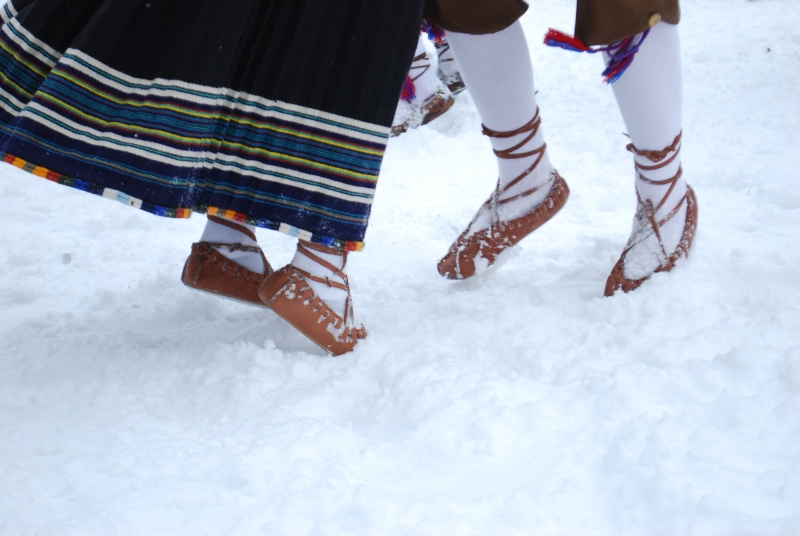 Viiskudega lumes Foto Urmas Saard