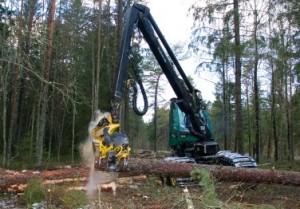 Nii tehakse harvesteriga metsatööd. Foto: Luua metsanduskool