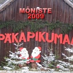 Fotomeenutus 2009. aasta päkapikumaast. Foto: virveblogi.blogspot.com