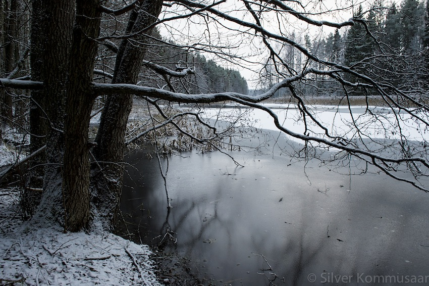 Jäääär on veel vesine. Foto: Silver Kommusaar